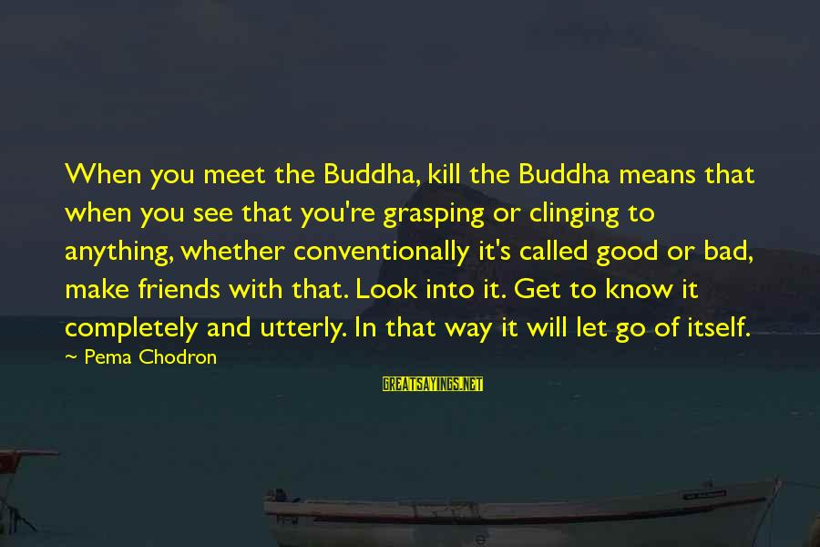 Buddha Clinging Sayings By Pema Chodron: When you meet the Buddha, kill the Buddha means that when you see that you're