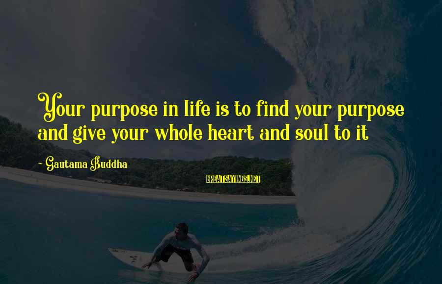 Buddha Soul Sayings By Gautama Buddha: Your purpose in life is to find your purpose and give your whole heart and