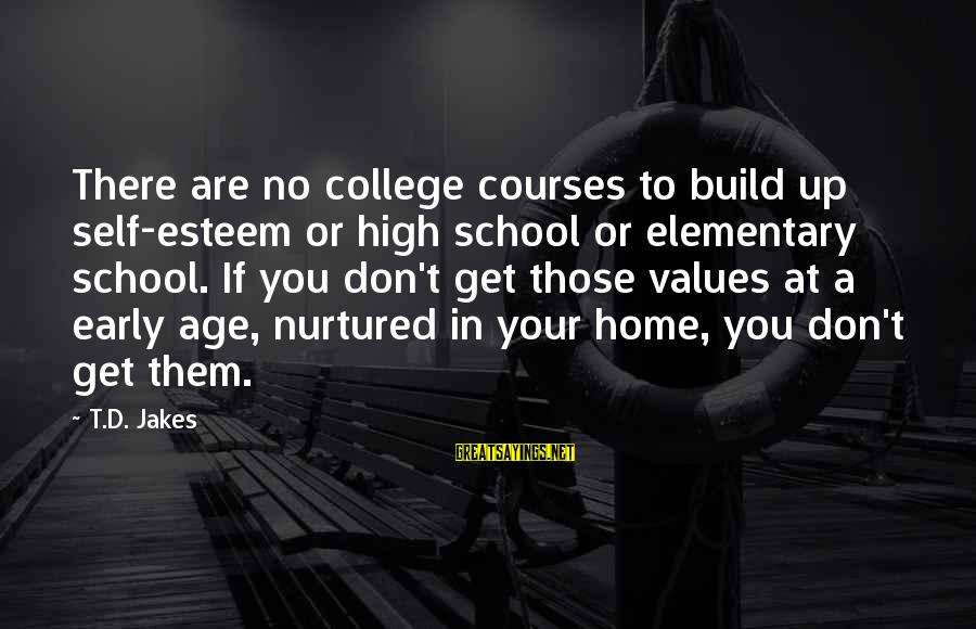 Build Self Esteem Sayings By T.D. Jakes: There are no college courses to build up self-esteem or high school or elementary school.