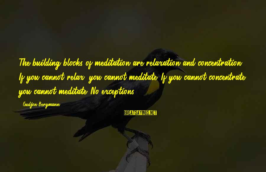 Building Blocks Sayings By Gudjon Bergmann: The building blocks of meditation are relaxation and concentration. If you cannot relax, you cannot