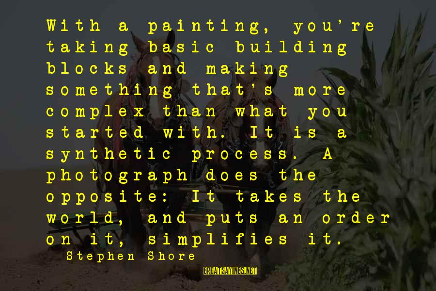 Building Blocks Sayings By Stephen Shore: With a painting, you're taking basic building blocks and making something that's more complex than