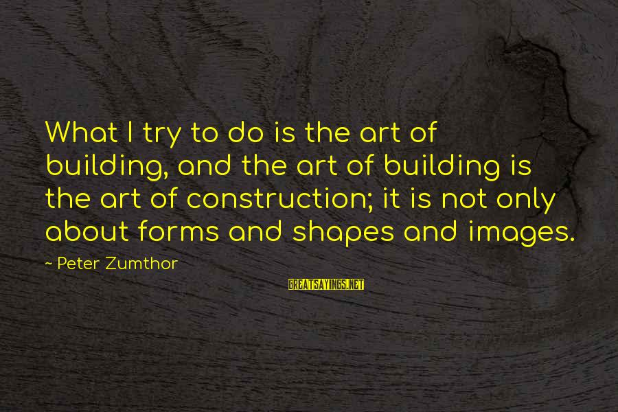 Building Construction Sayings By Peter Zumthor: What I try to do is the art of building, and the art of building