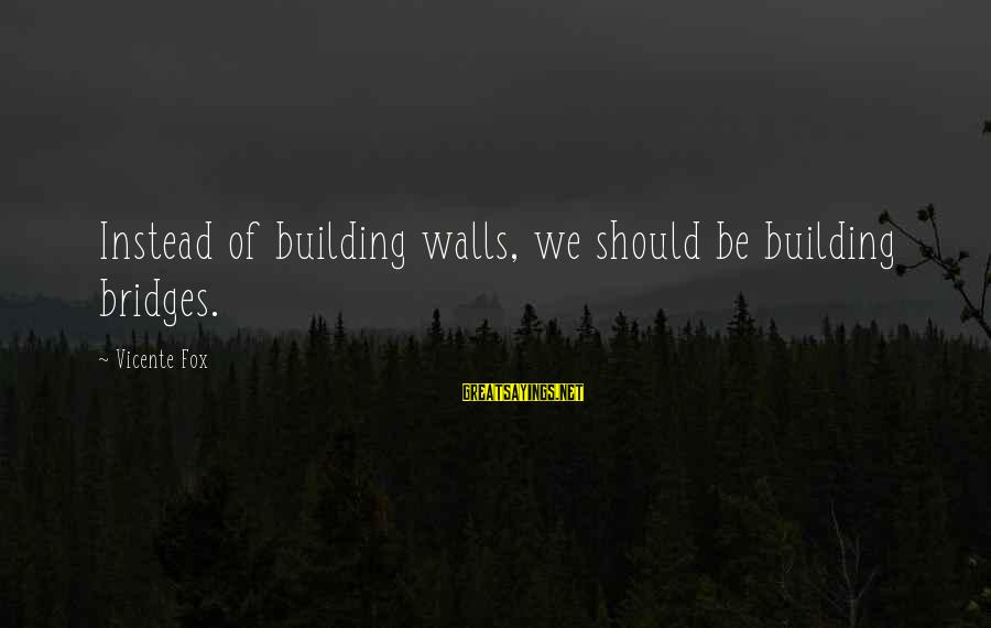 Building Walls And Bridges Sayings By Vicente Fox: Instead of building walls, we should be building bridges.