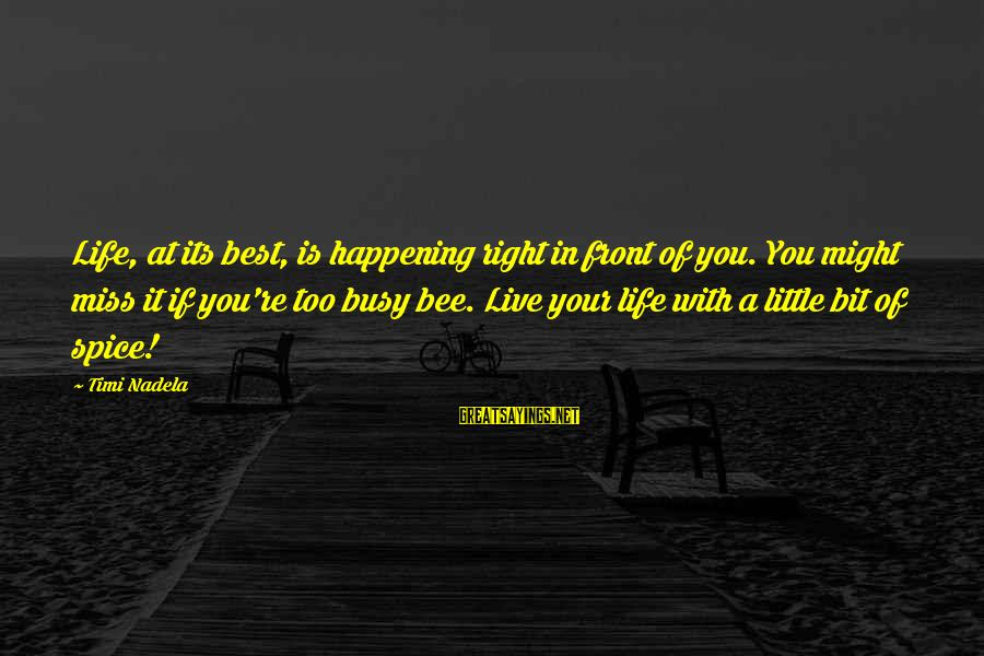 Busy Bee Quotes Sayings By Timi Nadela: Life, at its best, is happening right in front of you. You might miss it