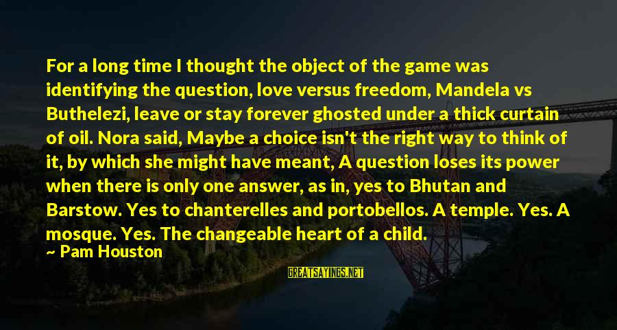Buthelezi Sayings By Pam Houston: For a long time I thought the object of the game was identifying the question,