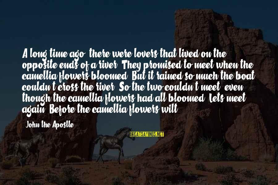 Camellia Sayings By John The Apostle: A long time ago, there were lovers that lived on the opposite ends of a