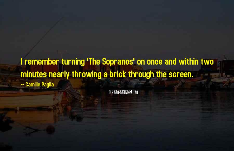 Camille Paglia Sayings: I remember turning 'The Sopranos' on once and within two minutes nearly throwing a brick