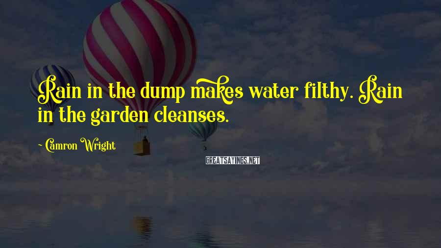 Camron Wright Sayings: Rain in the dump makes water filthy. Rain in the garden cleanses.
