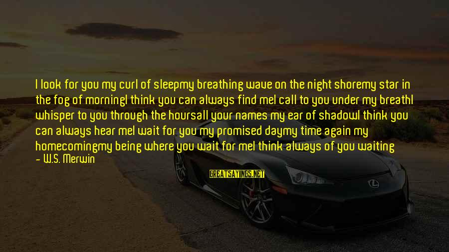 Can You Hear Me Sayings By W.S. Merwin: I look for you my curl of sleepmy breathing wave on the night shoremy star