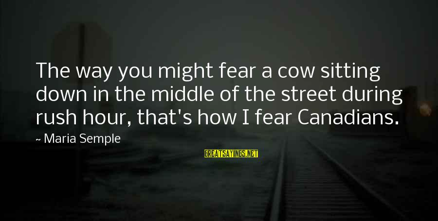 Canadians Sayings By Maria Semple: The way you might fear a cow sitting down in the middle of the street