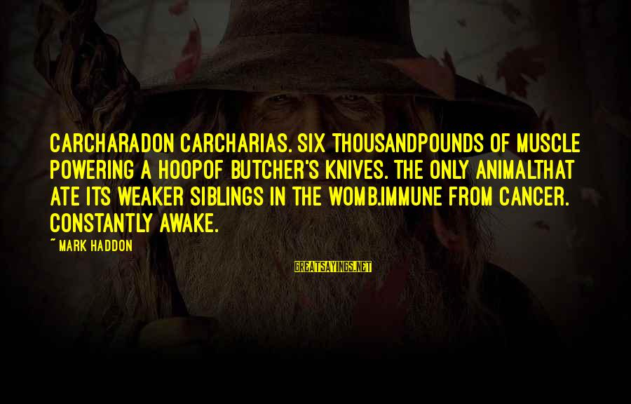 Carcharadon Sayings By Mark Haddon: Carcharadon carcharias. Six thousandpounds of muscle powering a hoopof butcher's knives. The only animalthat ate