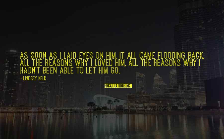 Career Passion Sayings By Lindsey Kelk: As soon as I laid eyes on him, it all came flooding back, all the