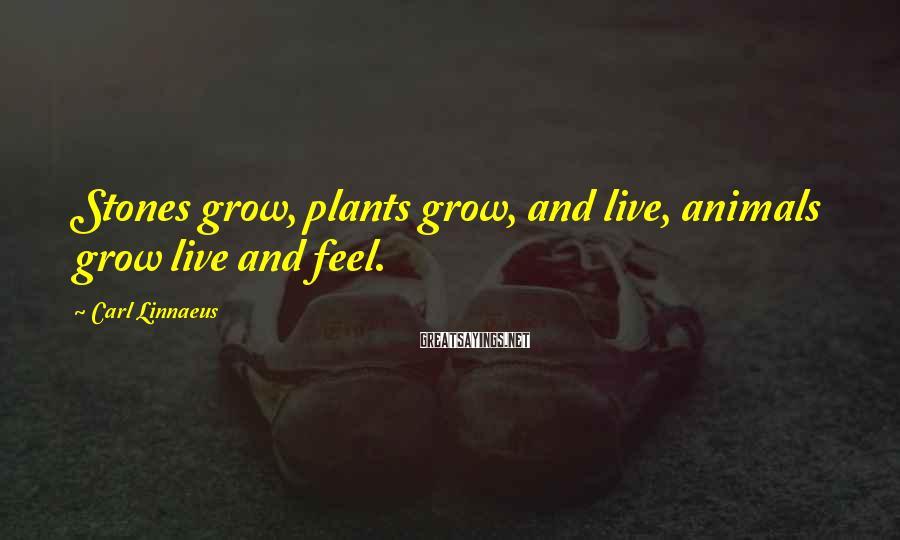 Carl Linnaeus Sayings: Stones grow, plants grow, and live, animals grow live and feel.