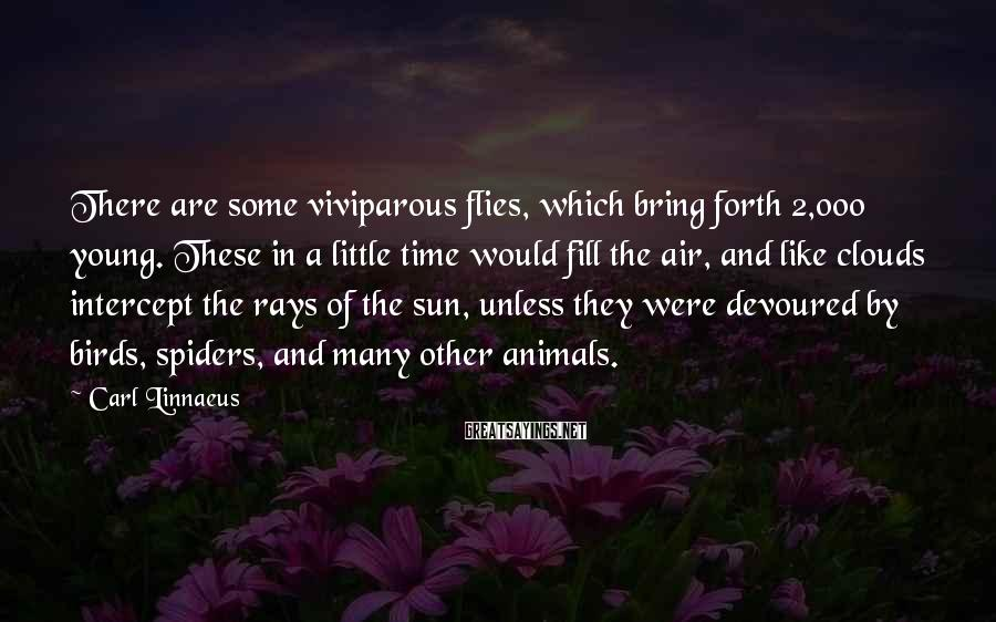 Carl Linnaeus Sayings: There are some viviparous flies, which bring forth 2,000 young. These in a little time
