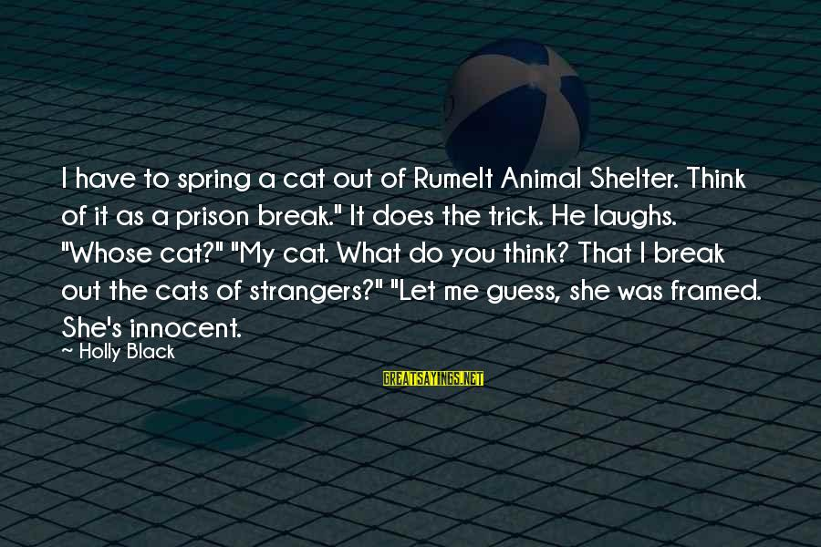 Cat Shelter Sayings By Holly Black: I have to spring a cat out of Rumelt Animal Shelter. Think of it as