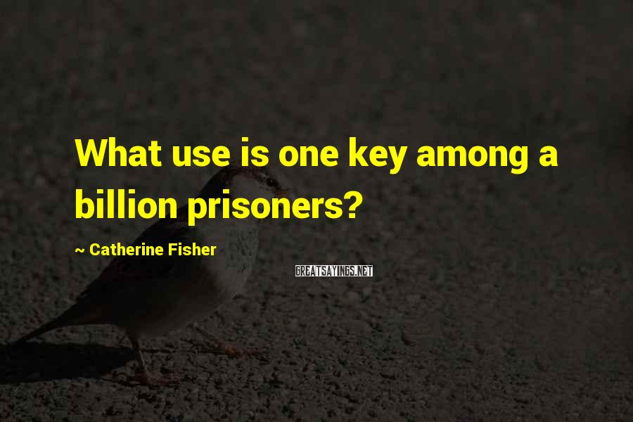 Catherine Fisher Sayings: What use is one key among a billion prisoners?