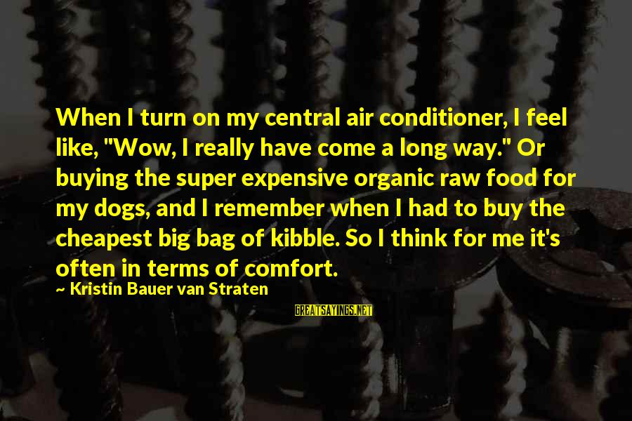 """Central Air Sayings By Kristin Bauer Van Straten: When I turn on my central air conditioner, I feel like, """"Wow, I really have"""