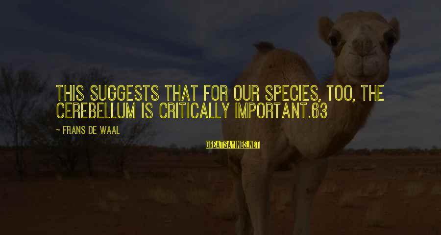 Cerebellum Sayings By Frans De Waal: This suggests that for our species, too, the cerebellum is critically important.63