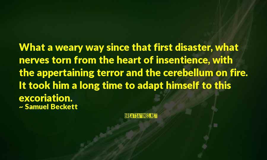 Cerebellum Sayings By Samuel Beckett: What a weary way since that first disaster, what nerves torn from the heart of