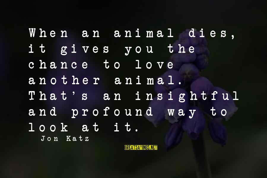 Chance And Love Sayings By Jon Katz: When an animal dies, it gives you the chance to love another animal. That's an