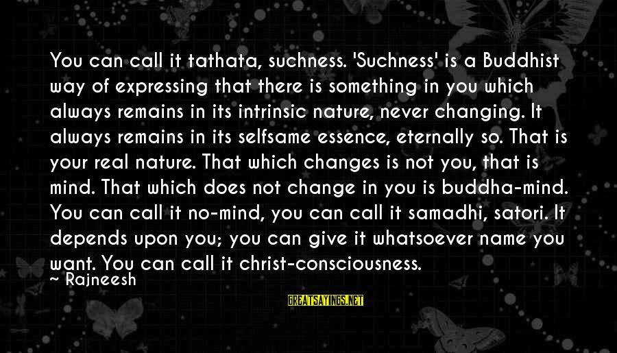 Changing Your Name Sayings By Rajneesh: You can call it tathata, suchness. 'Suchness' is a Buddhist way of expressing that there