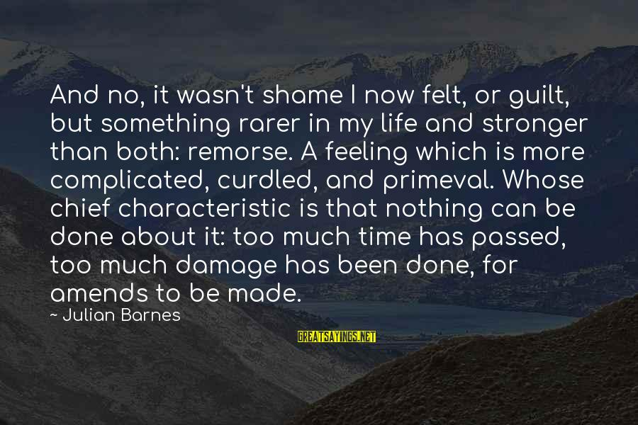 Characteristic Sayings By Julian Barnes: And no, it wasn't shame I now felt, or guilt, but something rarer in my