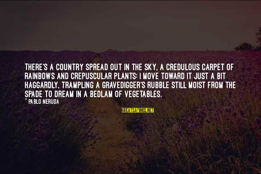 Chaston Sayings By Pablo Neruda: There's a country spread out in the sky, a credulous carpet of rainbows and crepuscular