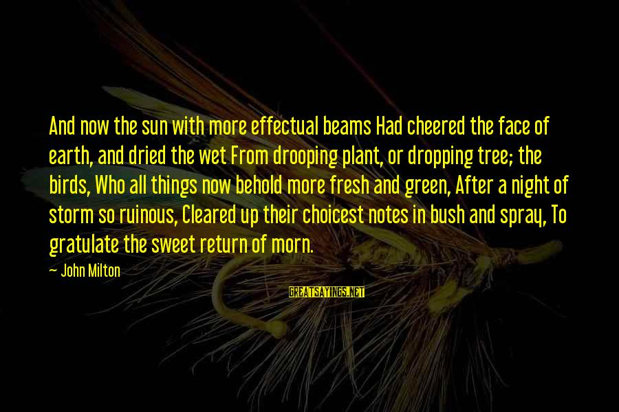 Cheered Up Sayings By John Milton: And now the sun with more effectual beams Had cheered the face of earth, and
