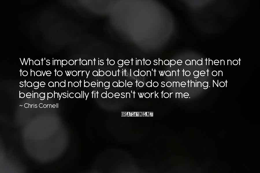 Chris Cornell Sayings: What's important is to get into shape and then not to have to worry about