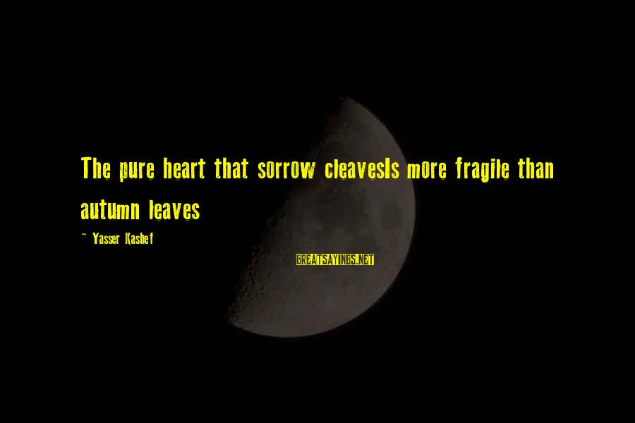 Cleaves Sayings By Yasser Kashef: The pure heart that sorrow cleavesIs more fragile than autumn leaves
