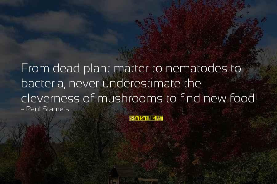 Cleverness Sayings By Paul Stamets: From dead plant matter to nematodes to bacteria, never underestimate the cleverness of mushrooms to