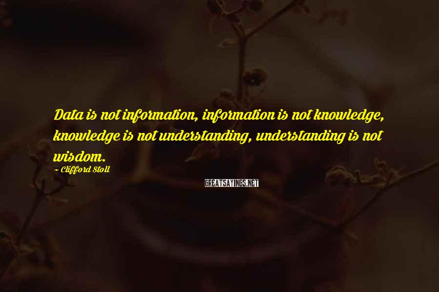 Clifford Stoll Sayings: Data is not information, information is not knowledge, knowledge is not understanding, understanding is not