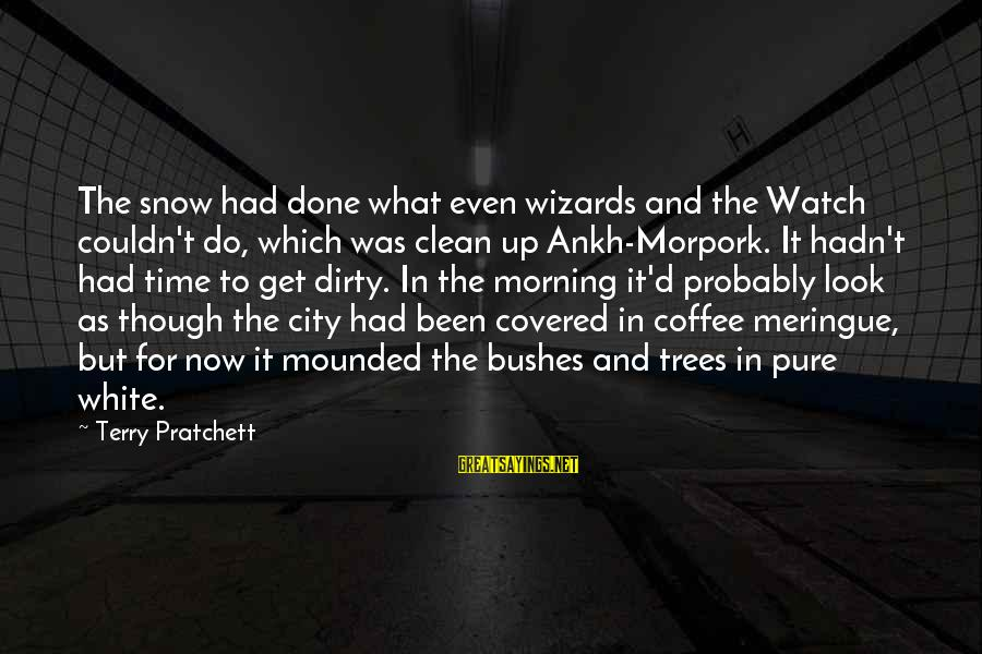 Coffee In The Morning Sayings By Terry Pratchett: The snow had done what even wizards and the Watch couldn't do, which was clean