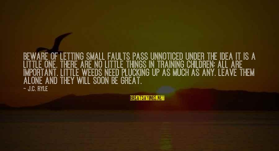 Collated Sayings By J.C. Ryle: Beware of letting small faults pass unnoticed under the idea it is a little one.
