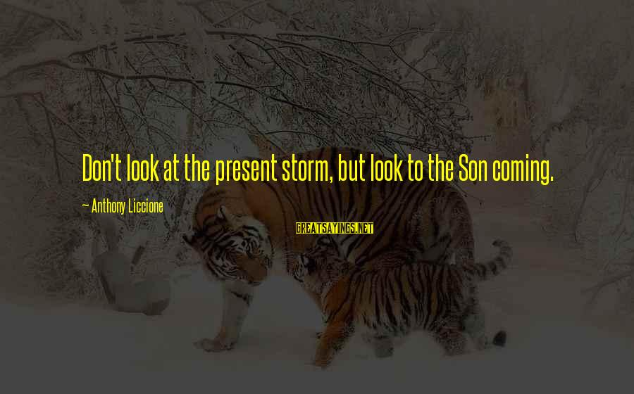 Coming Out Of The Storm Sayings By Anthony Liccione: Don't look at the present storm, but look to the Son coming.