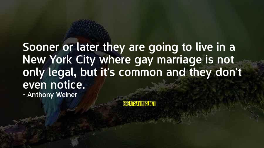 Common Legal Sayings By Anthony Weiner: Sooner or later they are going to live in a New York City where gay
