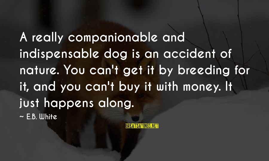Companionable Sayings By E.B. White: A really companionable and indispensable dog is an accident of nature. You can't get it