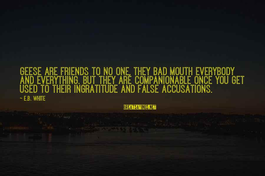 Companionable Sayings By E.B. White: Geese are friends to no one, they bad mouth everybody and everything. But they are