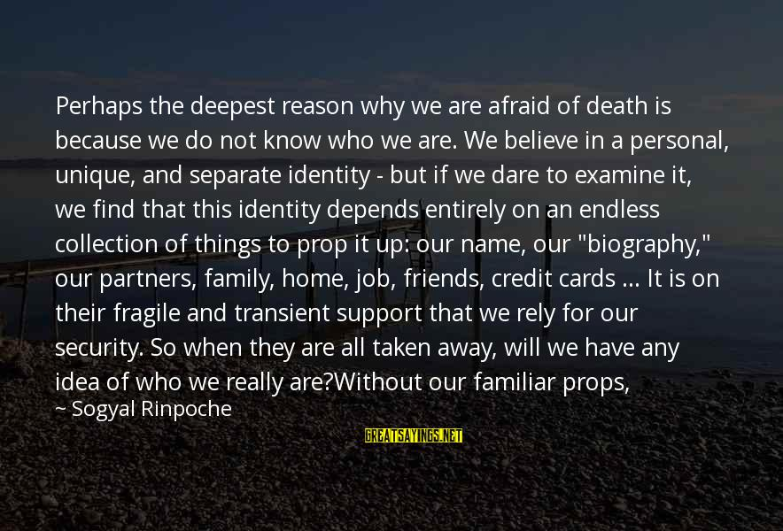 Connecting With Old Friends Sayings By Sogyal Rinpoche: Perhaps the deepest reason why we are afraid of death is because we do not