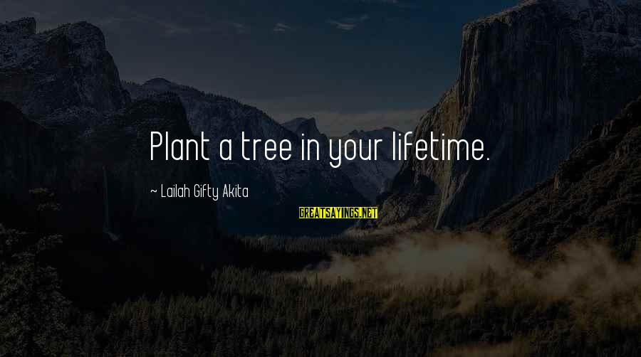 Conservation Of Trees Sayings By Lailah Gifty Akita: Plant a tree in your lifetime.