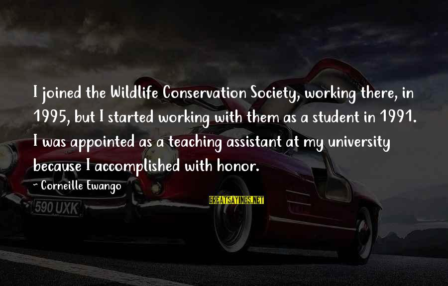 Conservation Of Wildlife Sayings By Corneille Ewango: I joined the Wildlife Conservation Society, working there, in 1995, but I started working with