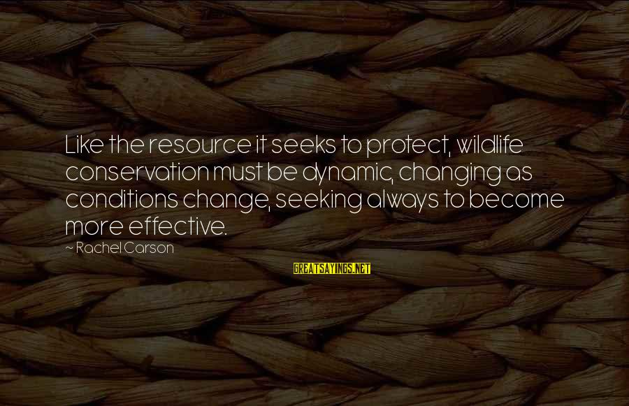 Conservation Of Wildlife Sayings By Rachel Carson: Like the resource it seeks to protect, wildlife conservation must be dynamic, changing as conditions