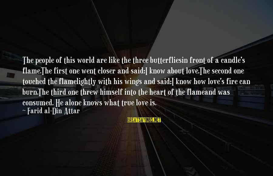 Consumed Love Sayings By Farid Al-Din Attar: The people of this world are like the three butterfliesin front of a candle's flame.The