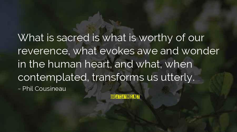 Contemplated Sayings By Phil Cousineau: What is sacred is what is worthy of our reverence, what evokes awe and wonder