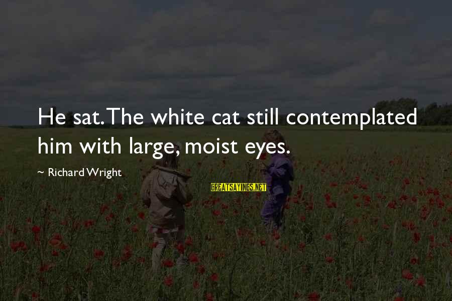 Contemplated Sayings By Richard Wright: He sat. The white cat still contemplated him with large, moist eyes.