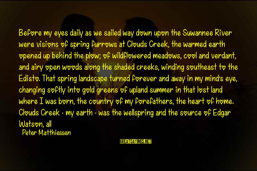 Cool Spring Sayings By Peter Matthiessen: Before my eyes daily as we sailed way down upon the Suwannee River were visions