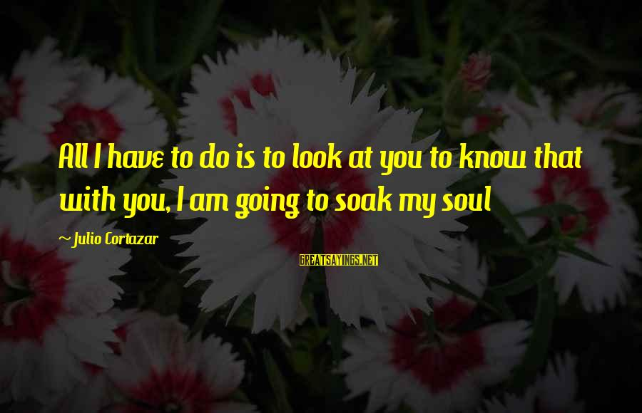 Cortazar Love Sayings By Julio Cortazar: All I have to do is to look at you to know that with you,