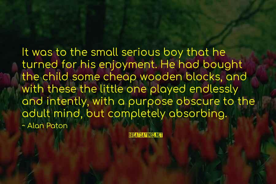 Country Boy Sayings By Alan Paton: It was to the small serious boy that he turned for his enjoyment. He had