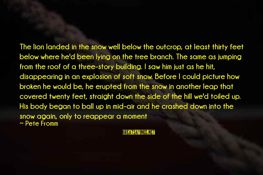Covered Up Sayings By Pete Fromm: The lion landed in the snow well below the outcrop, at least thirty feet below
