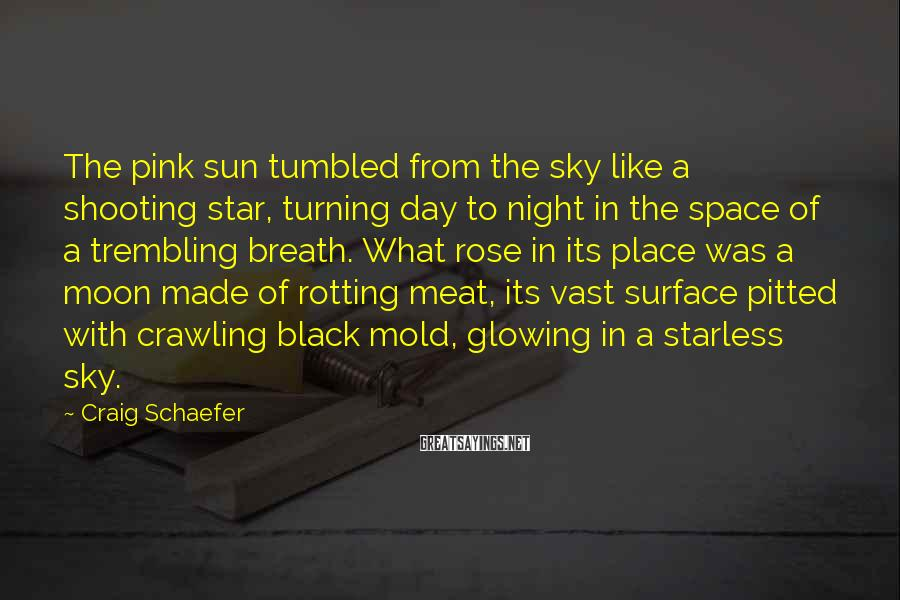 Craig Schaefer Sayings: The pink sun tumbled from the sky like a shooting star, turning day to night
